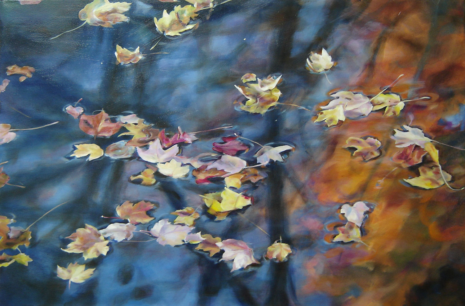 maple leaves on floating on a body of water