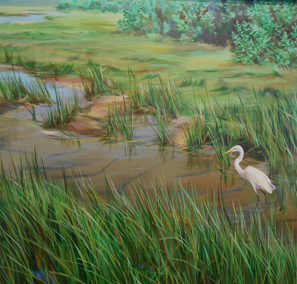 wetland marsh with white egret